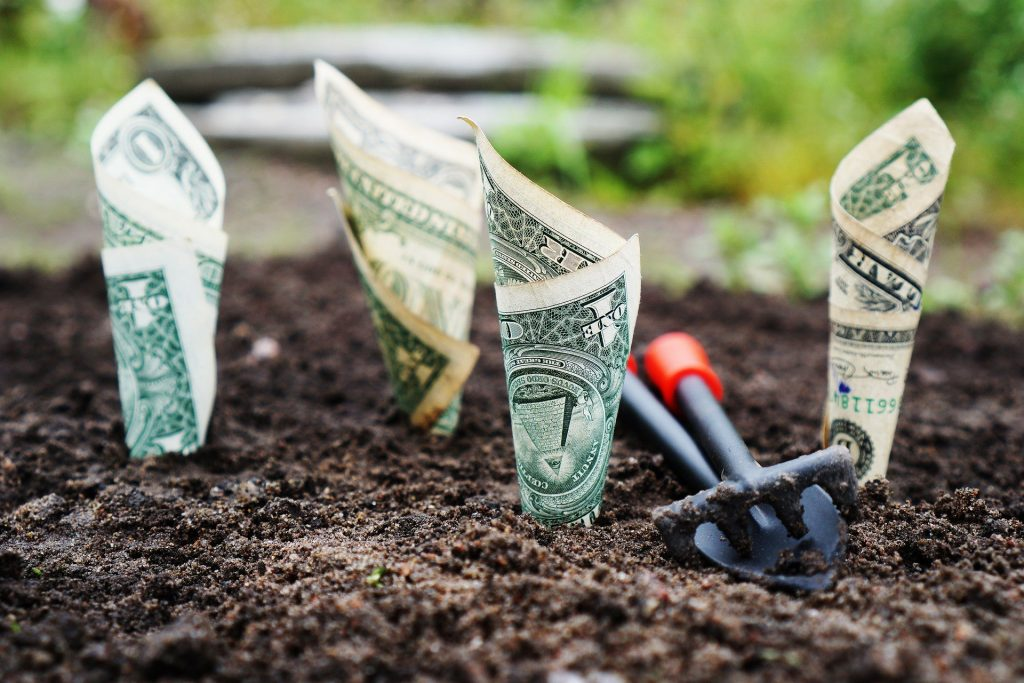 Dollar bills set in soil to represent the concept of investing.